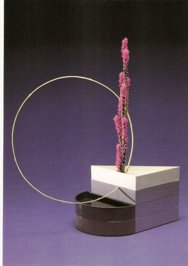 Hiroshi Teshigahara Blazing Star Bamboo postcard