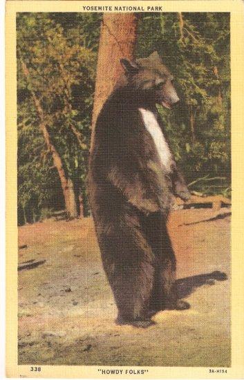 Bear Yosemite National Park Howdy FOlks 3A-H154 postcard pc