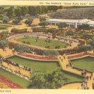 Paddock Santa Anita Park Arcadia CA postcard vintage horse racing