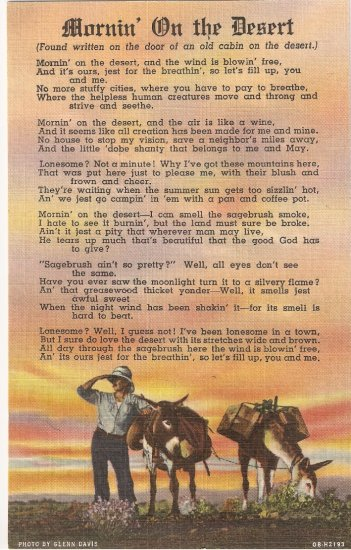 Morning on the Desert vintage postcard