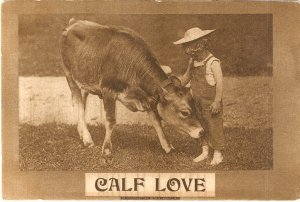 Calf Love 1910 vintage postcard