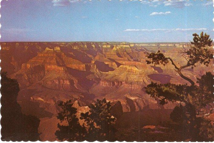 Grand Canyon National Park Arizona vintage postcard
