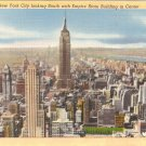 Roof View New York City Empire State Building vintage postcard