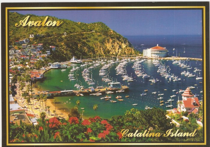 Avalon Catalina Island California postcard