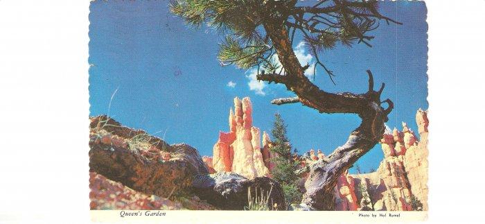 Queen Garden Bryce National Park Utah vintage postcard