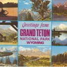 Grand Teton National Park Wyoming vintage postcard