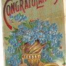 Heartiest Congratulations 1912 Heymann vintage blue flowers postcard