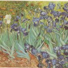 Vincent Van Gogh Irises J Paul Getty Museum Malibu California 1990 postcard