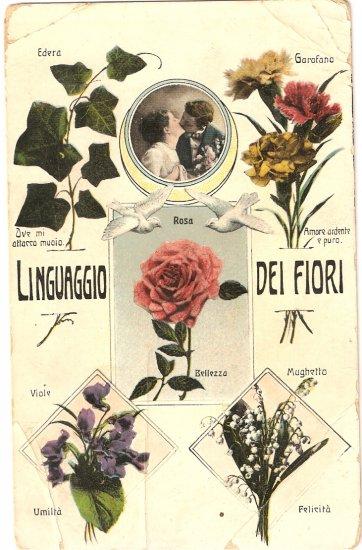 Vintage Antique Postcard Linguaggio del Fiori Italy Flowers