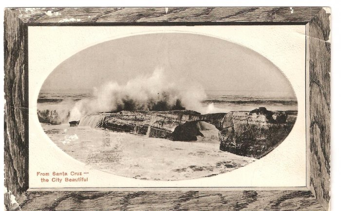 Santa Cruz City Beautiful California PNC Series vintage postcard