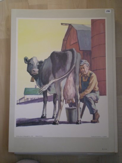 Caring For Creatures Providence Lithograph 1962 Caddell print