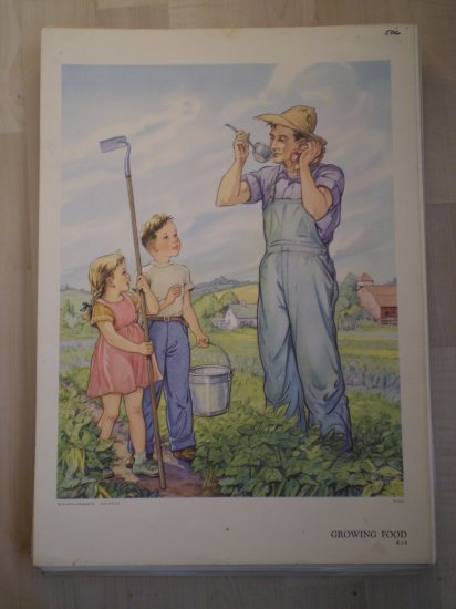 Growing Food Providence Lithograph Vintage Wilhoite print