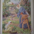Things That Grow Providence Lithograph Vintage Ayer print