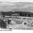 Vintage Postcard Sowiniec Krakow Poland Fields Farm