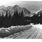 Vintage Postcard Morskie Oko Tatry Poland Road Droga do Moskiego Oka