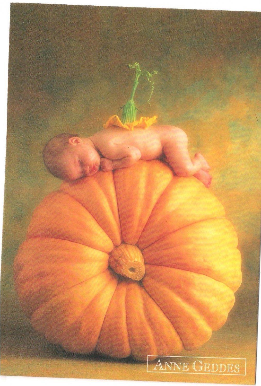 Anne Geddes Postcard 1995 605-015 Baby Pumpkin 4x6