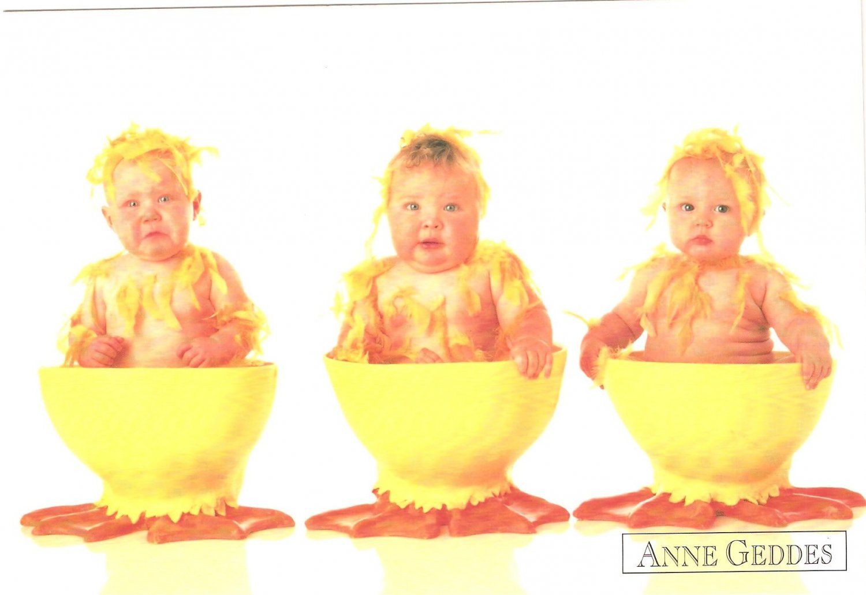 Anne Geddes Postcard 1995 605-019 Baby Ducklings 4x6
