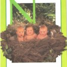 Anne Geddes Postcard 1995 605-067 N is for Nest Baby 4x6