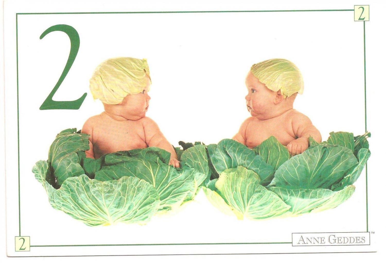 Anne Geddes Postcard 1995 605-081 2 Cabbage Baby 4x6