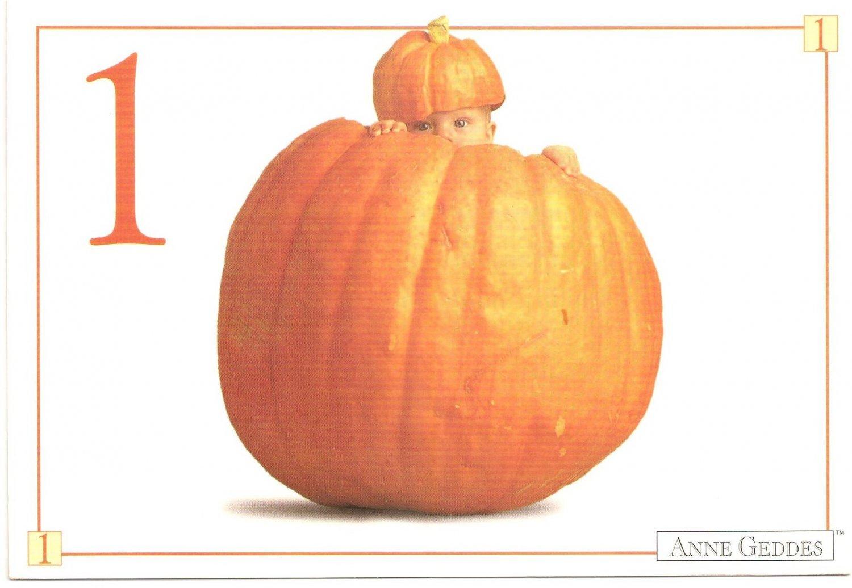 Anne Geddes Postcard 1995 605-080 1 Pumpkin Baby 4x6