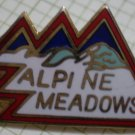 Alpine Meadows Ski Resort Enamel Goldtone Metal Vintage RTSI 1979