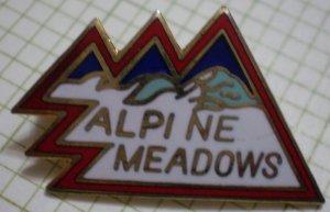 Alpine Meadows Ski Resort Enamel Goldtone Metal Vintage RTSI 1979