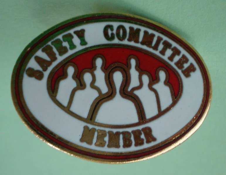 Safety Committee Member Pin Goldtone Metal