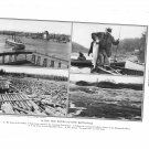 New Brunswick St John Atlantic salmon Restigouche River Nepissiquit River Plate Print 1936 Book