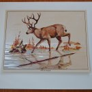 Fred Sweney Mule Deer Foil Print Vintage Animal