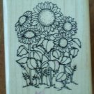 DOTS Small Sunflower Love Rubber Stamp H201 Wood Mounted Clean D.O.T.S. Flowers