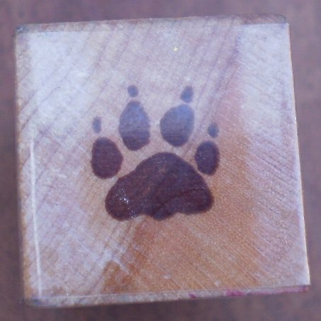 Rubber Stamp Pawprint 123A All Night Media Mounted 1982 Paw Print
