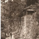 Vintage Postcard Japan Woods Pagoda Walkway