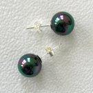 10mm Tahitian Black South Sea Shell Pearl Earrings