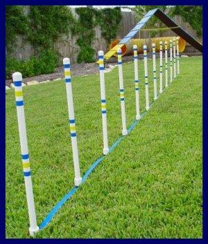 Weave Poles - Dog agility Equipment - Set of 12