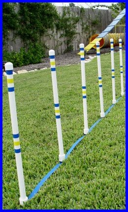Weave Poles - Dog agility Equipment - Set of 6