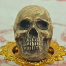 Haunted Skull Spirit ghost witchcraft Chaman sorcery Magic Amulet