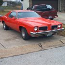 1973 Grand am/GTO grand am GTO 73 PONCHO GOAT