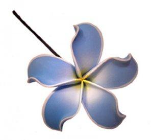 Hawaiian Plumeria Frangipani Flower Hair Bobby Pin Hand Made Baby Blue White