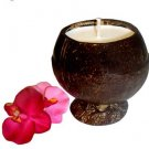 Hand Poured Triple Scented Soy Candle in a Natural Coconut Shell Exotic Plumeria