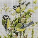 Birds DMC cross stitch pattern in pdf DMC