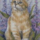 Cat with flowers DMC cross stitch pattern in pdf DMC