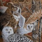 Owls DMC cross stitch pattern in pdf DMC