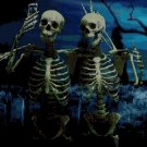 Skeleton selfie  DMC cross stitch pattern in pdf DMC
