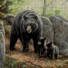 The bear family DMC cross stitch pattern in pdf DMC