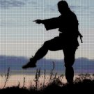 Combat training DMC cross stitch pattern in pdf DMC