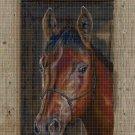 Horse head DMC cross stitch pattern in pdf DMC
