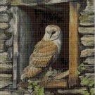 Owl in window DMC cross stitch pattern in pdf DMC