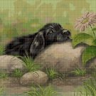 Puppy on the stone DMC cross stitch pattern in pdf DMC