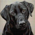 Dog2 DMC cross stitch pattern in pdf DMC