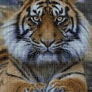 Sumatran Tiger DMC cross stitch pattern in pdf DMC